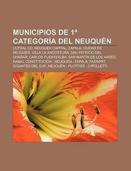 Municipios de 1ª categoría del Neuquén als Taschenbuch von