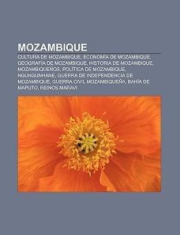 Mozambique als Taschenbuch von