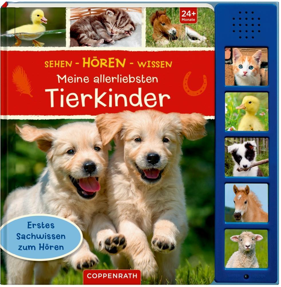 Sehen - Hören - Wissen:Meine allerliebsten Tierkinder als Buch von