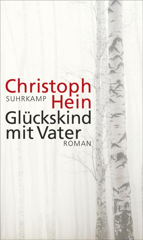 Glückskind mit Vater als Buch von Christoph Hein
