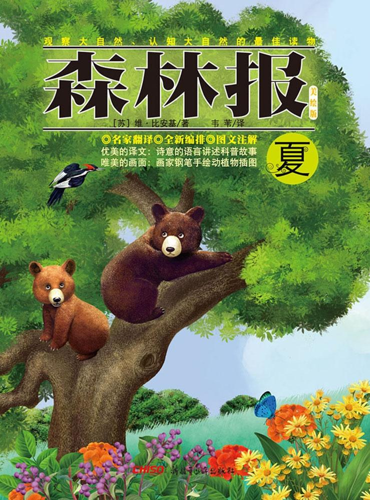 Forest Report·Summer als eBook von Bianchi, Wei Wei Translated by