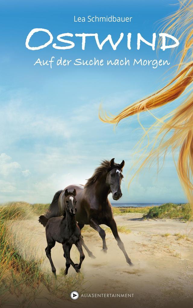 Ostwind 04 - Auf der Suche nach Morgen als Buch von Lea Schmidbauer