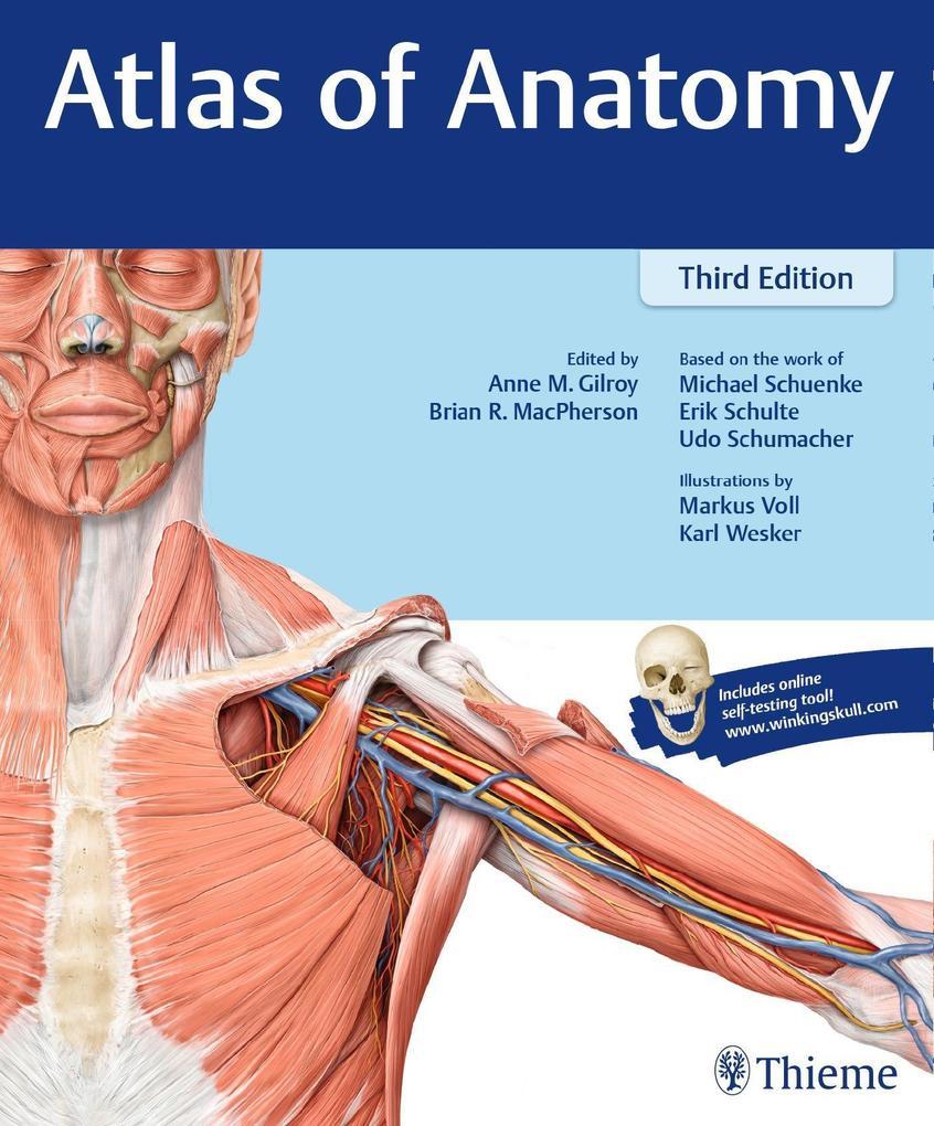 Atlas of Anatomy als Buch von Anne M Gilroy