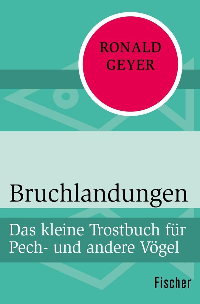 Bruchlandungen als Taschenbuch von Ronald Geyer