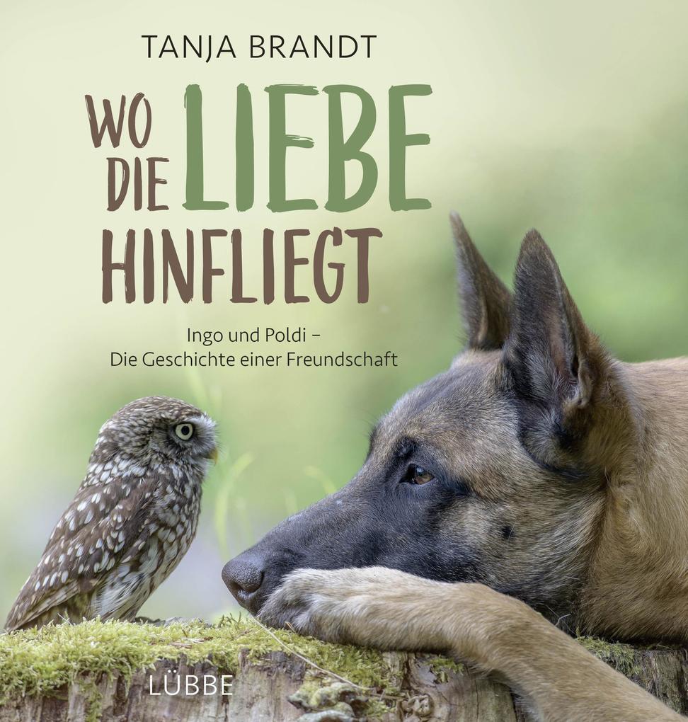 Wo die Liebe hinfliegt als Buch von Tanja Brandt