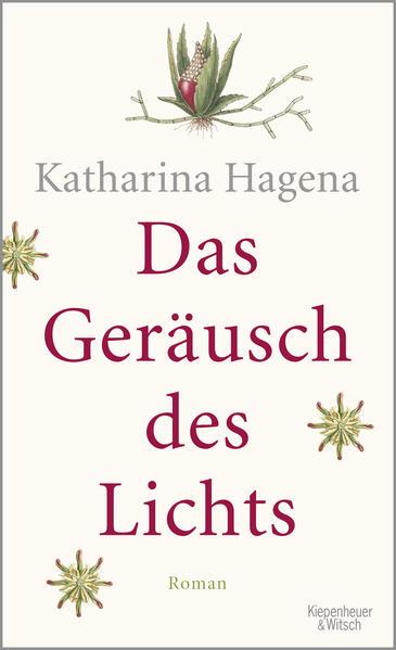 Das Geräusch des Lichts als Buch von Katharina Hagena