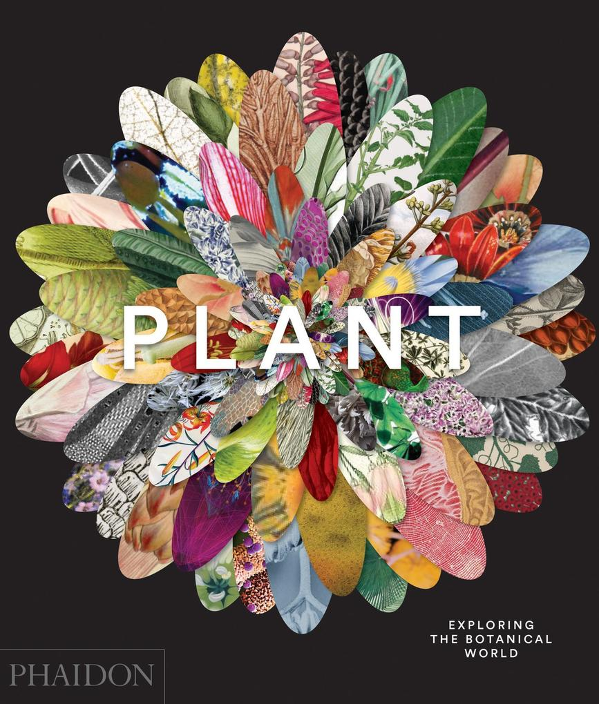 Plant: Exploring the Botanical World als Buch von Phaidon Editors