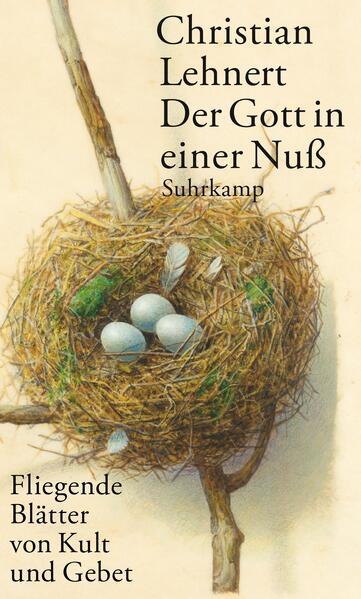 Der Gott in einer Nuß als Buch von Christian Lehnert