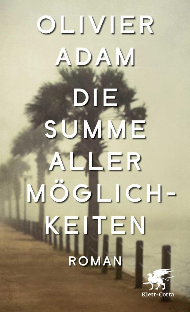 Die Summe aller Möglichkeiten als Buch von Olivier Adam
