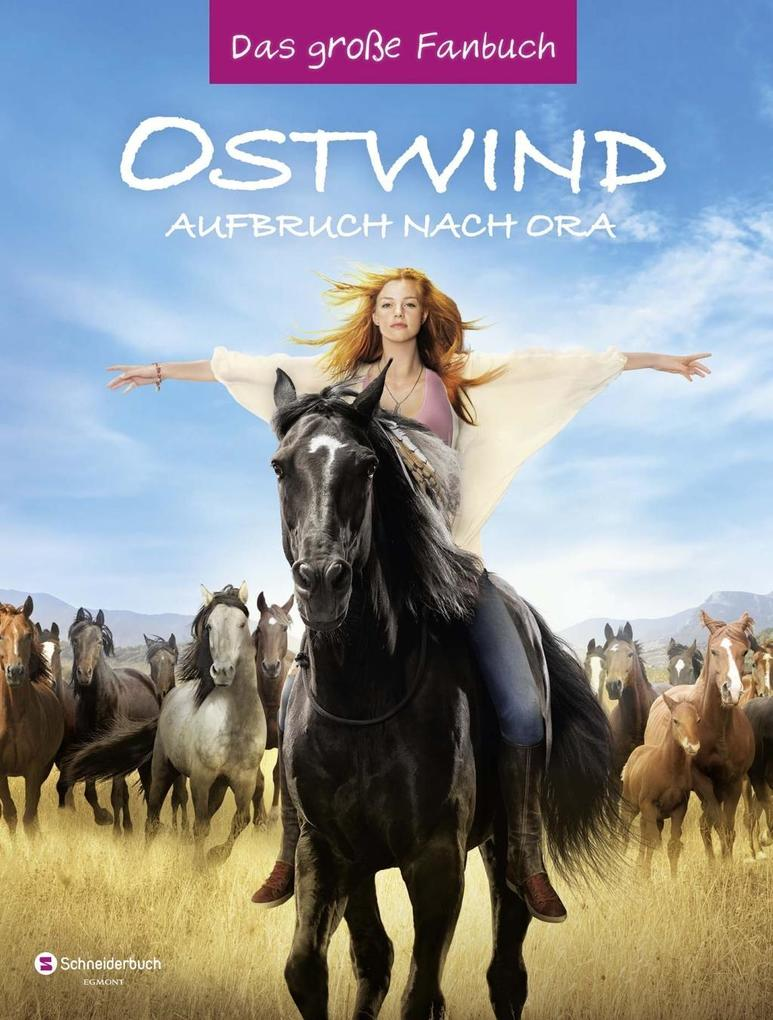 Ostwind - Aufbruch nach Ora als Buch von Karin Pütz