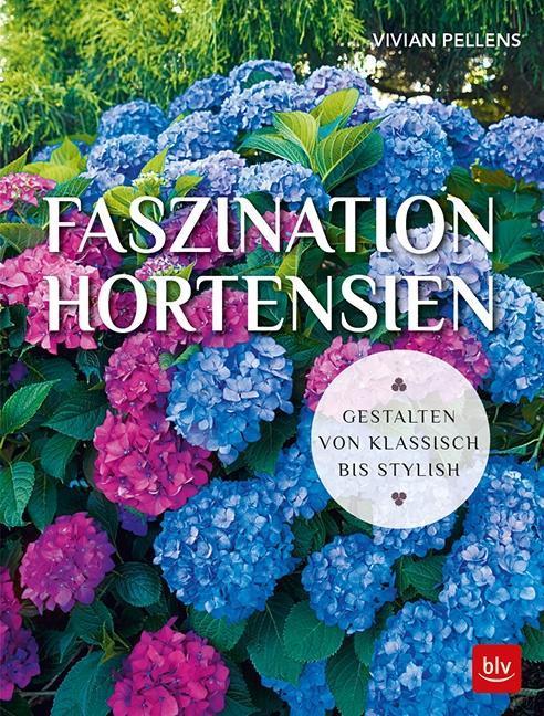 Faszination Hortensien als Buch von Vivian Pellens