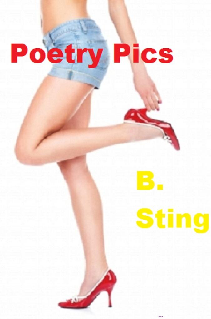 Poetry Pics als eBook von B. Sting