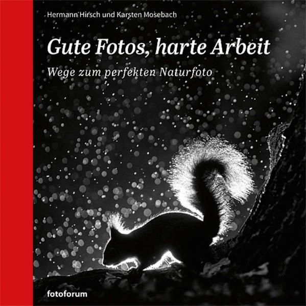 Gute Fotos, harte Arbeit als Buch von Hermann H...