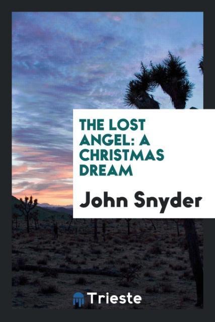 9780649315604 - The Lost Angel als Taschenbuch von John Snyder - 书
