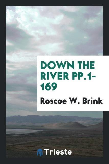 Down the River pp.1-169 als Taschenbuch von Roscoe W. Brink