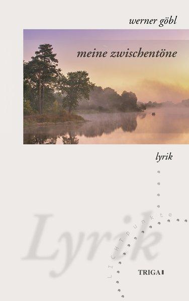 meine zwischentöne als Buch von Werner Göbl