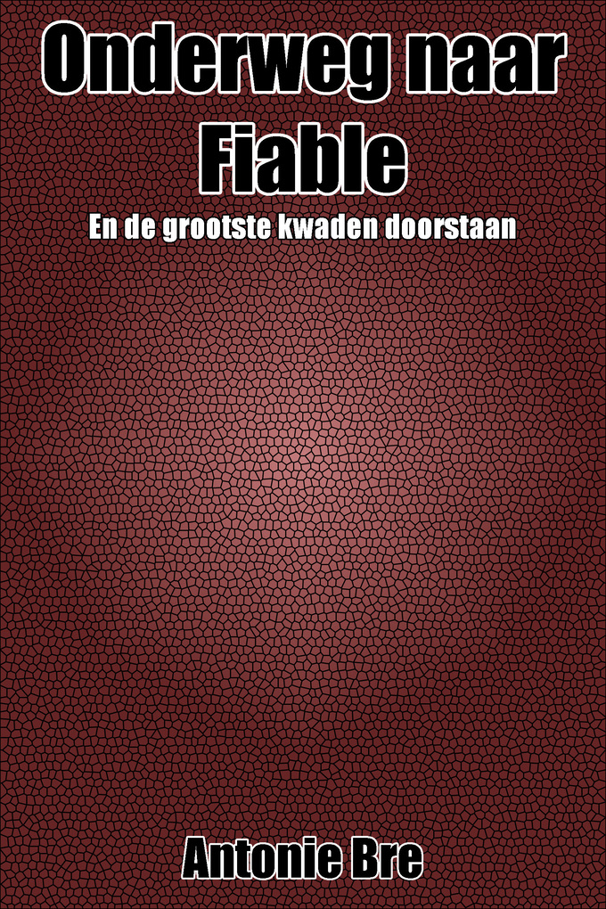 Onderweg naar Fiable als eBook von Xavier Brenet