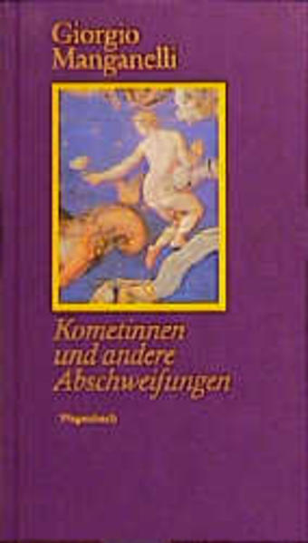 Kometinnen und andere Abschweifungen als Buch von Giorgio Manganelli