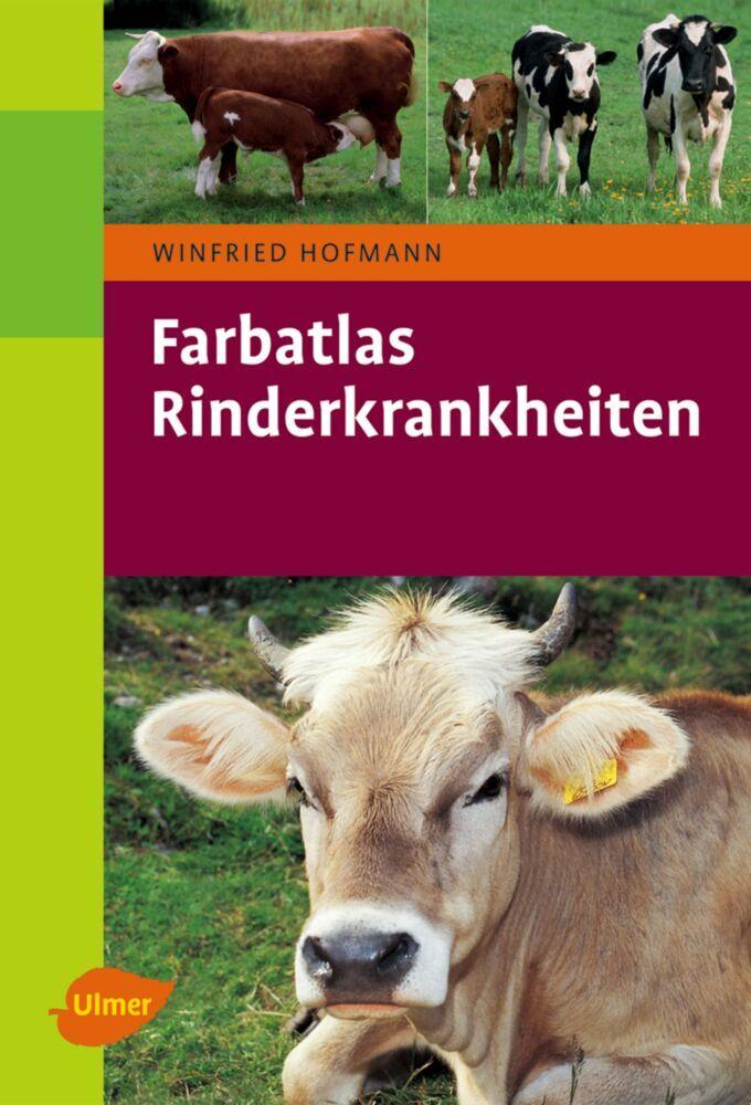 Farbatlas Rinderkrankheiten als Buch von Winfried Hofmann