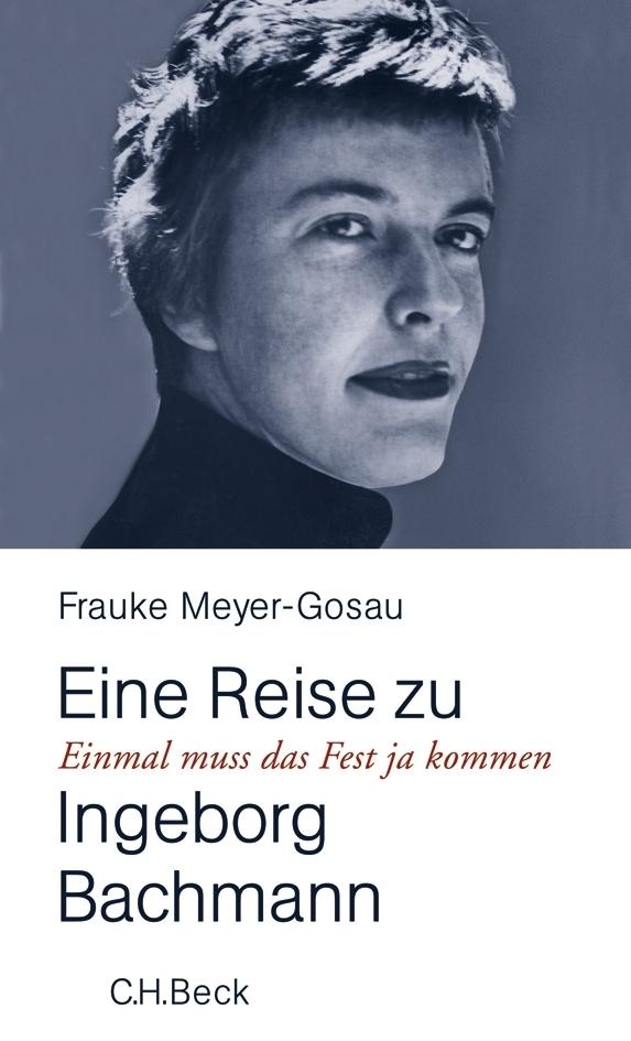 Einmal muß das Fest ja kommen als Buch von Frauke Meyer-Gosau