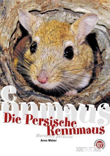 Persische Rennmaus als Buch von Anne Weber