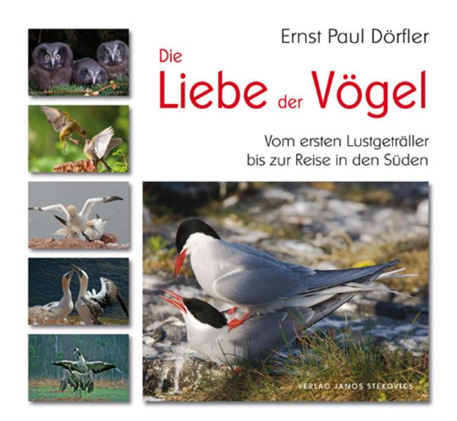 Die Liebe der Vögel als Buch von Ernst Paul Dörfler