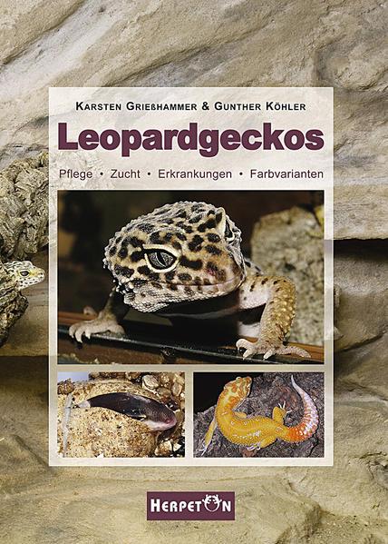 Leopardgeckos als Buch von Karsten Grießhammer, Gunther Köhler