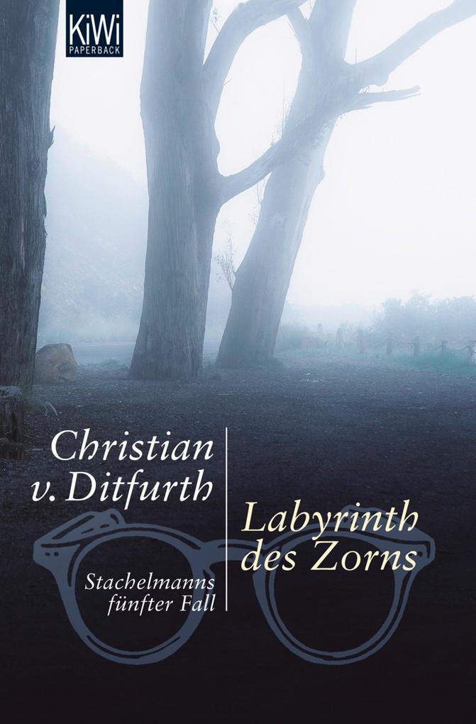 Labyrinth des Zorns als eBook von Christian Ditfurth