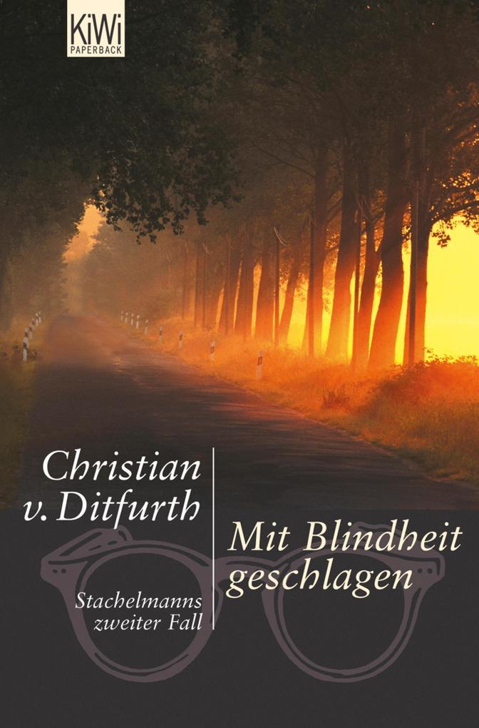 Mit Blindheit geschlagen als eBook von Christian Ditfurth