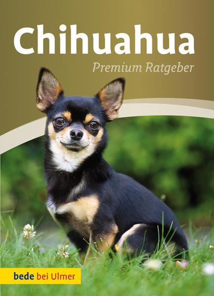 Chihuahua als Buch von Annette Schmitt