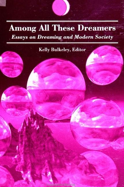 Among All These Dreamers: Essays on Dreaming and Modern Society als Taschenbuch
