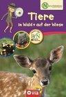 Naturdetektive - Tiere im Wald + auf der Wiese