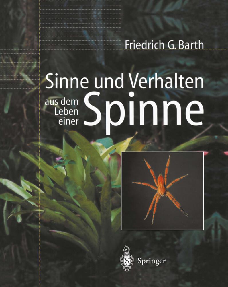 Sinne und Verhalten aus dem Leben einer Spinne als Buch