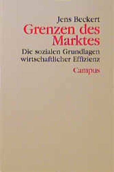 Grenzen des Marktes als Buch