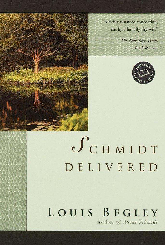 Schmidt Delivered als Buch