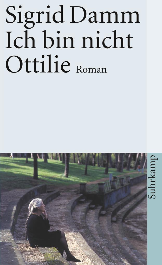 Ich bin nicht Ottilie als Taschenbuch