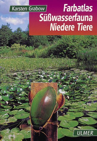 Farbatlas Süßwasserfauna. Wirbellose als Buch
