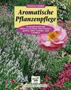 Aromatische Pflanzenpflege