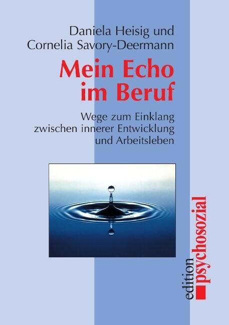 Mein Echo im Beruf als Buch