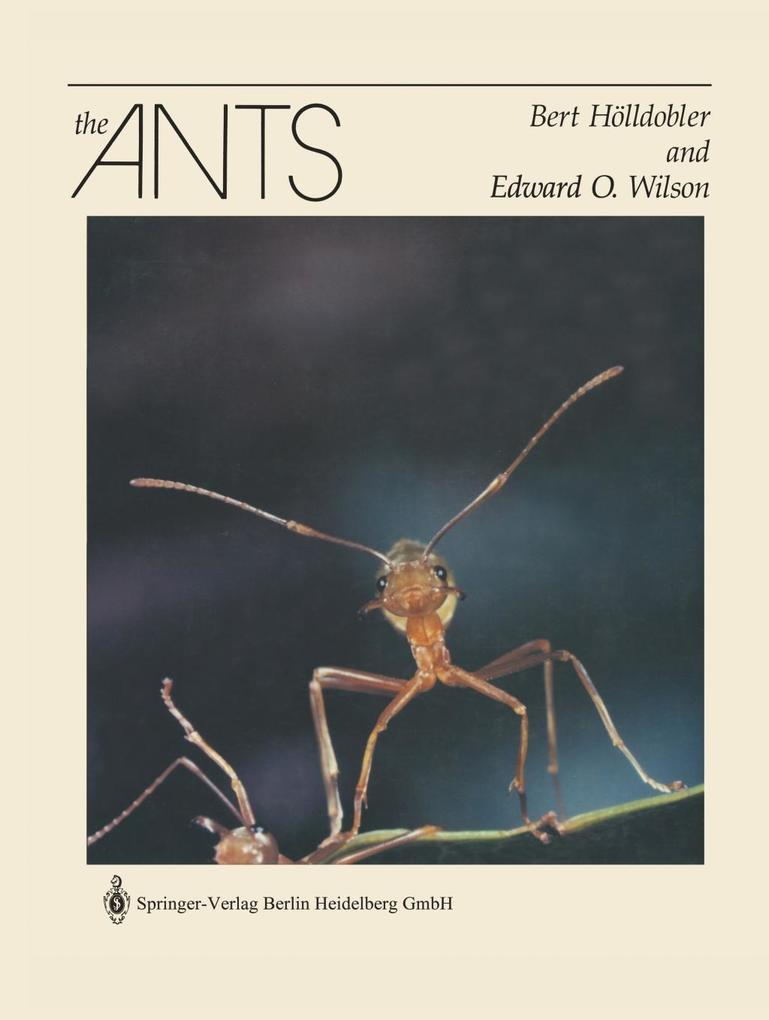 The Ants als Buch