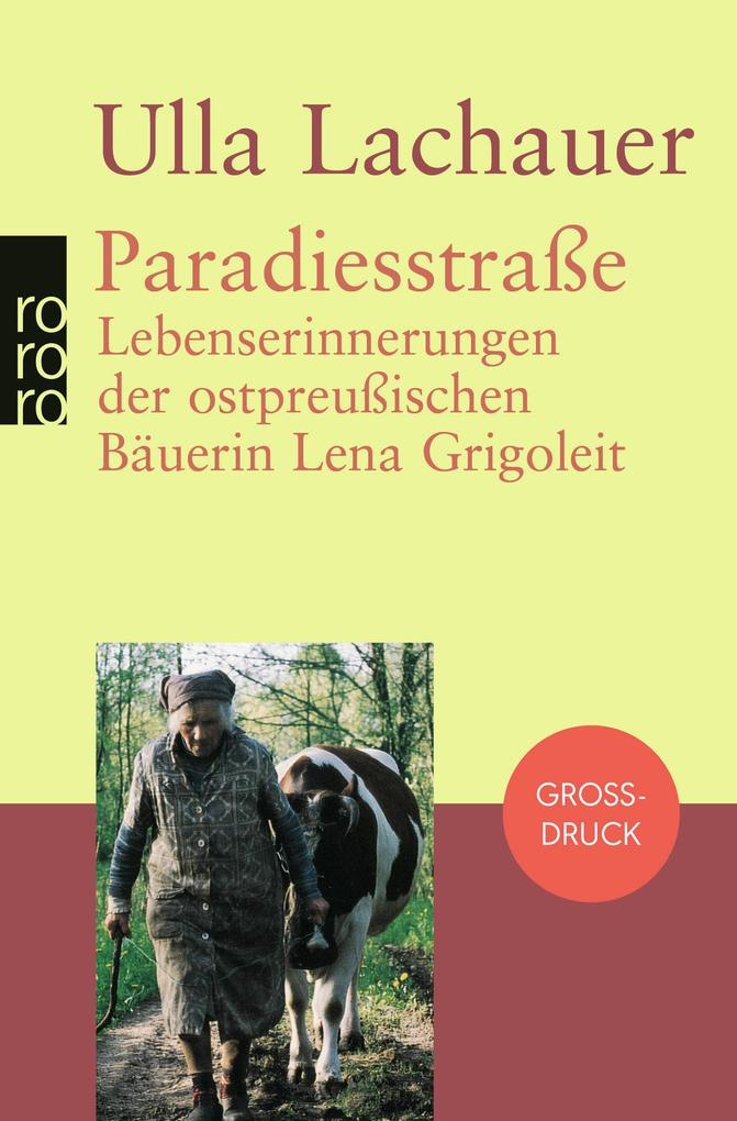 Paradiesstraße. Großdruck als Taschenbuch