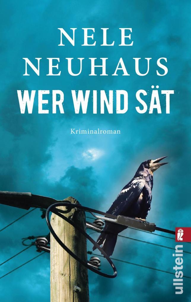 Wer Wind sät als eBook