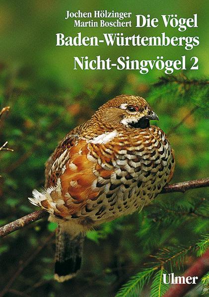 Nicht-Singvögel 2 als Buch