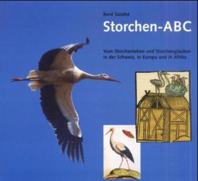 Storchen ABC als Buch
