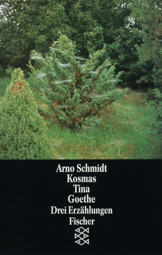 Kosmas Tina Goethe als Taschenbuch