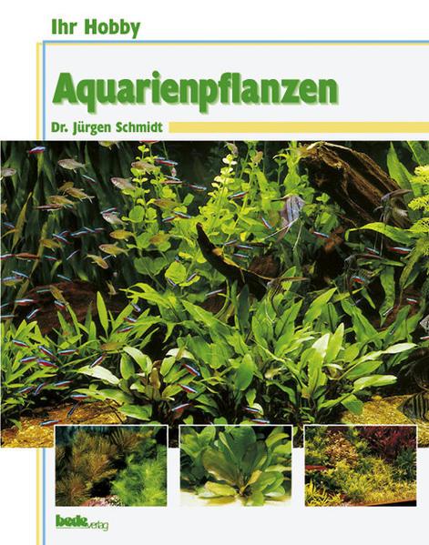 Ihr Hobby Aquarienpflanzen als Buch