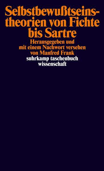 Selbstbewußtseinstheorien von Fichte bis Sartre als Taschenbuch