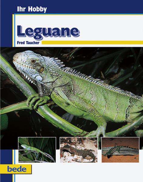 Ihr Hobby Leguane als Buch