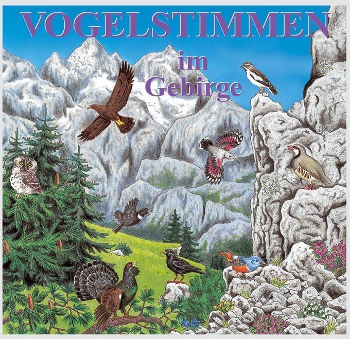 Vogelstimmen 7 im Gebirge. CD als Hörbuch