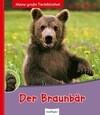 Der Braunbär